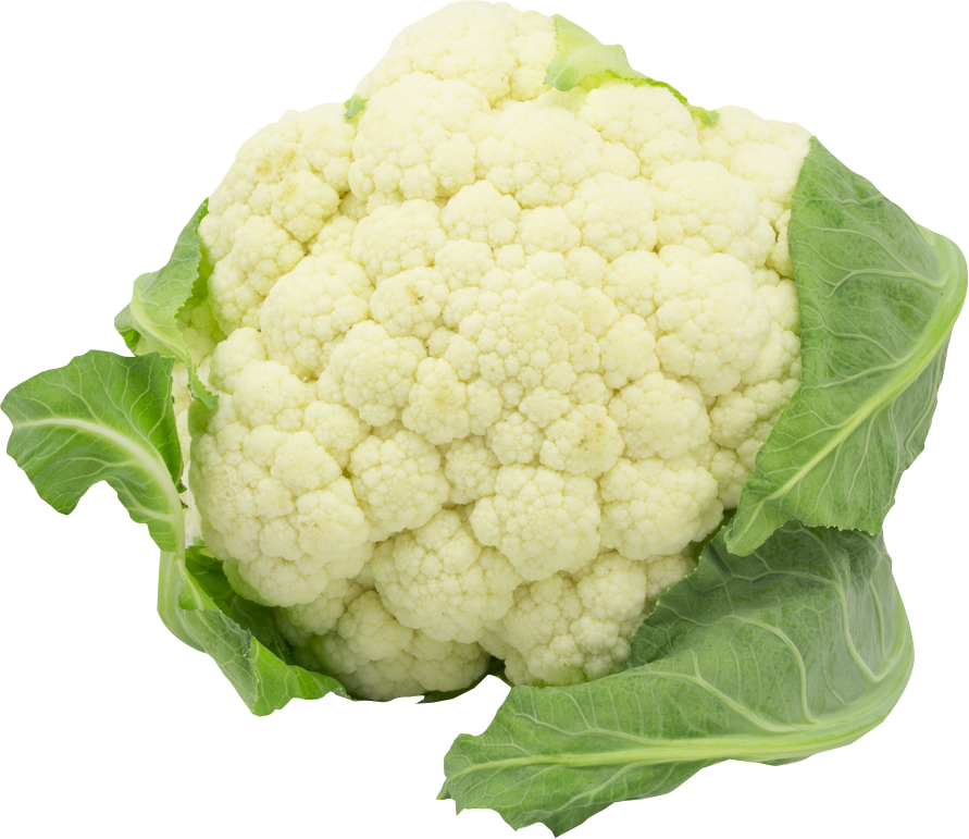 Cauliflower Clipart PNG Image-Cauliflower Clipart PNG Image-8
