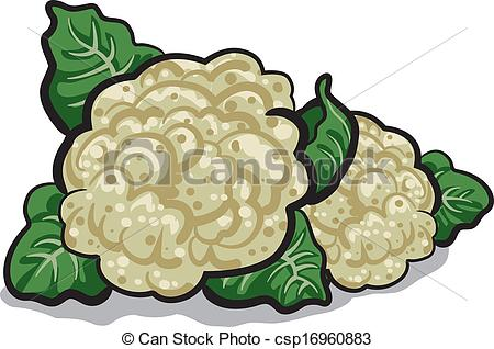 cauliflower - csp16960883