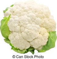 . ClipartLook.com Cauliflower Isolated O-. ClipartLook.com Cauliflower isolated on white background-11