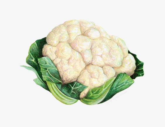 Cauliflower with green leaves