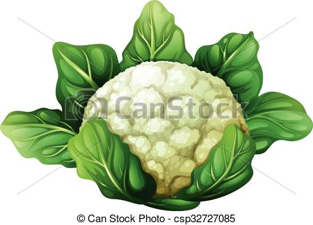 Cauliflower with green leaves - Cauliflower Clipart