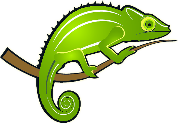 Chameleon Stock Illustrationb