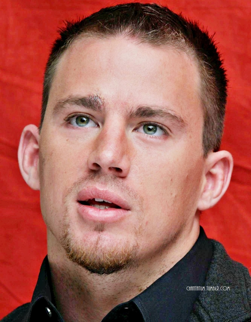 Channing Tatum Pictures : Photo-Channing Tatum Pictures : Photo-13