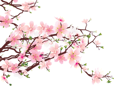 Cherry Blossom Border Clip Art Http Brig-Cherry Blossom Border Clip Art Http Brightenaday Com The Joys Of-1
