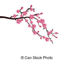 ... cherry blossom - vector illustration of a branch with cherry... ...