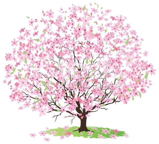 Cherry Tree Clip Art-Cherry Tree Clip Art-7