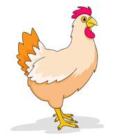 Chicken Cartoon Clipart Size: 66 Kb-Chicken Cartoon Clipart Size: 66 Kb-6