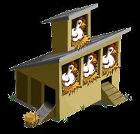 Chicken Coop-Chicken Coop-3