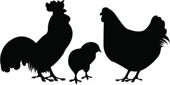 Rooster and hen silhouette 02