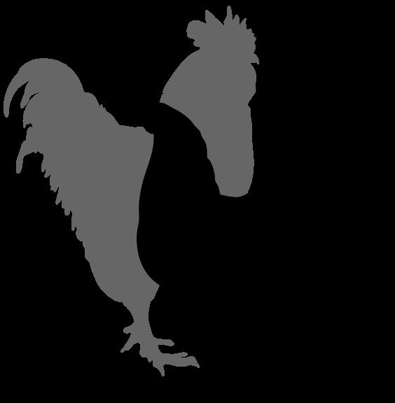 Chicken Silhouette Clipart Best-Chicken Silhouette Clipart Best-10