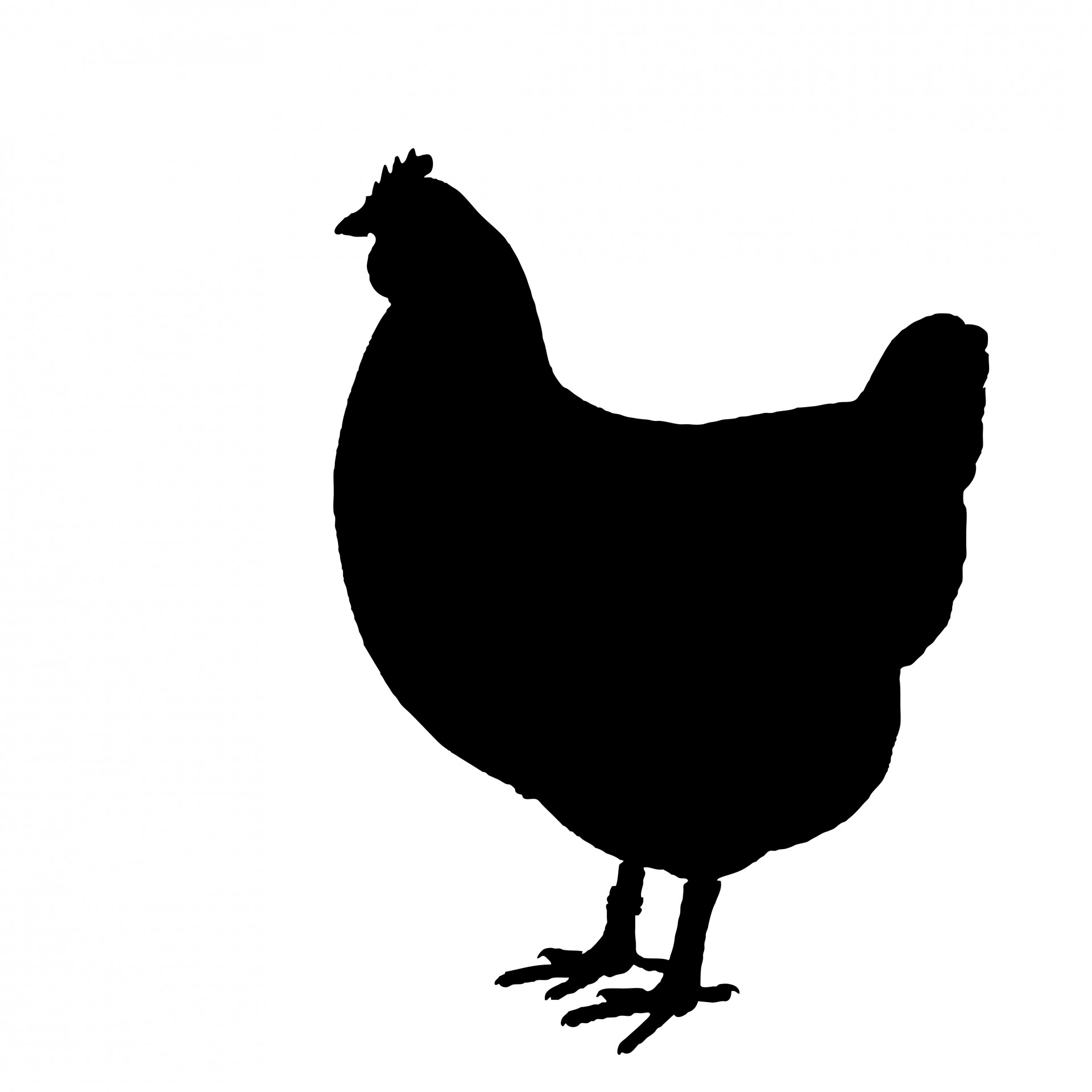 Chicken Silhouette Clipart .. - Chicken Silhouette Clip Art