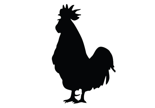 Chicken Silhouette Vector - Chicken Silhouette Clip Art