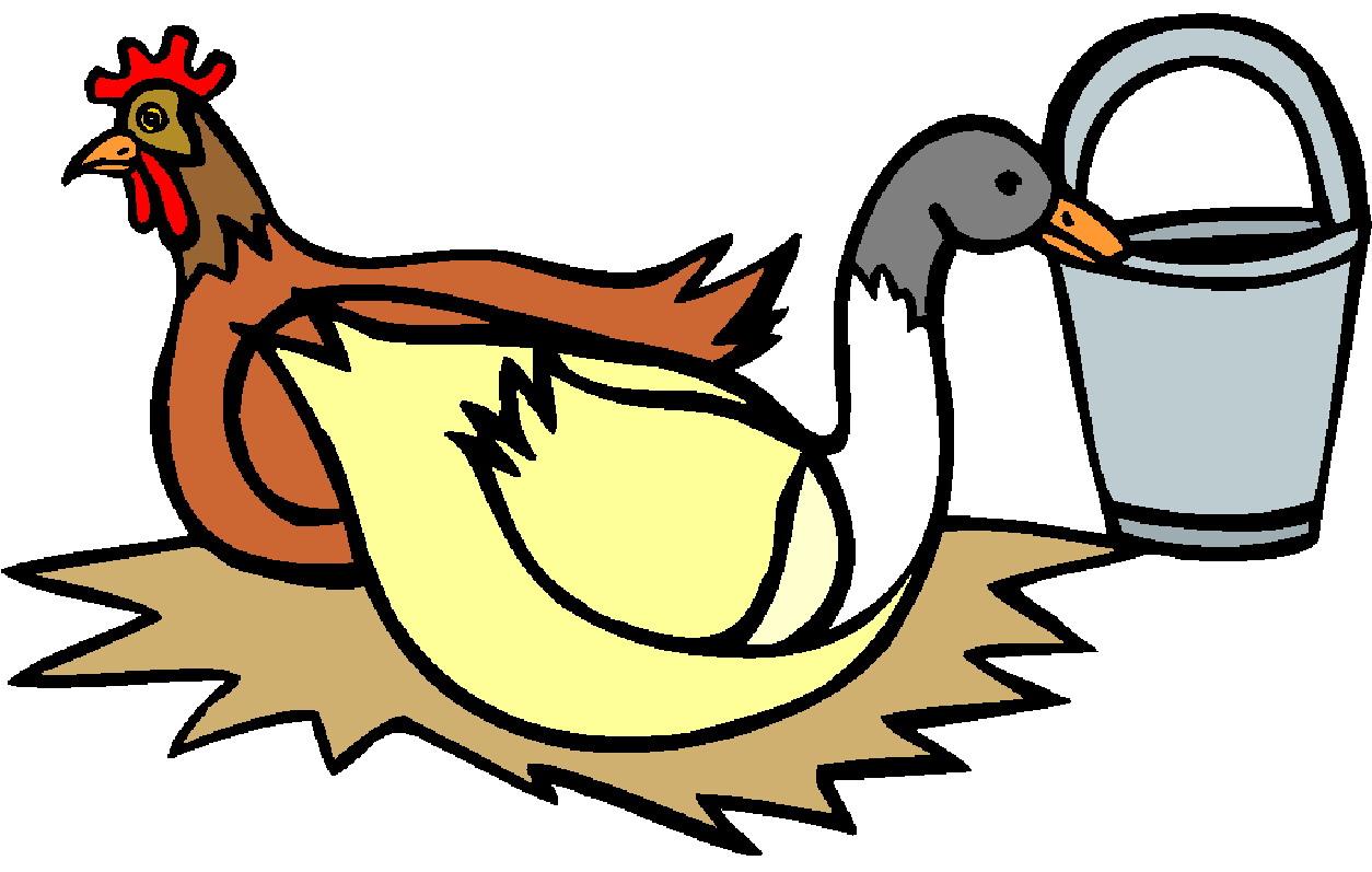 Chickens clip art