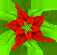 christmas clip art ponsettia