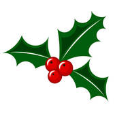 Christmas Holly Berry-Christmas holly berry-3