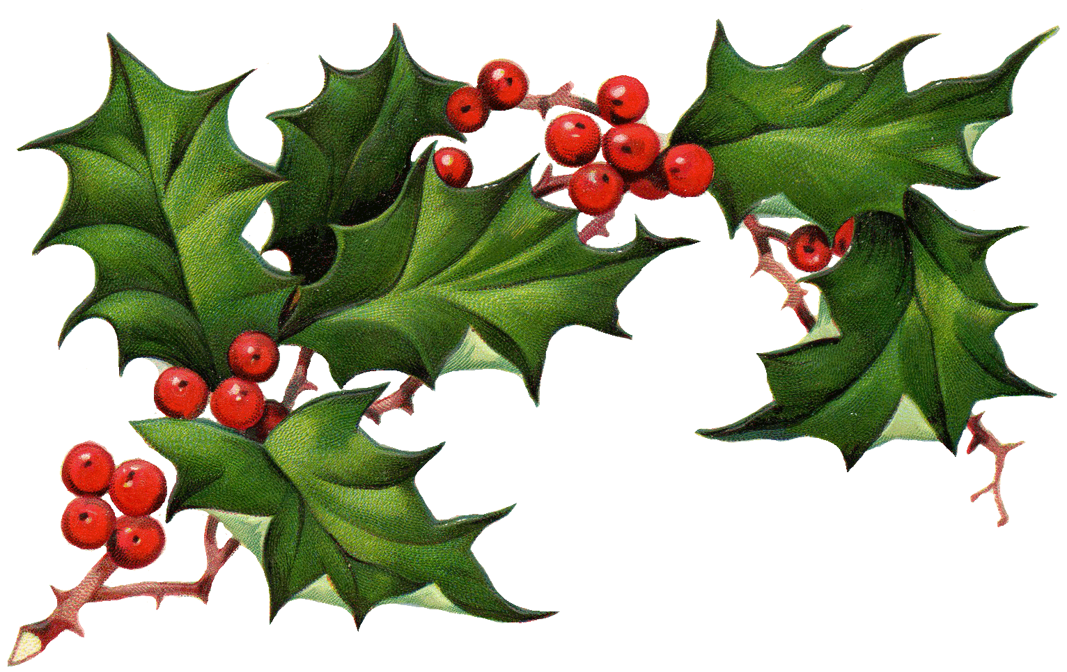 Christmas Holly Border Free Clipart Free-Christmas Holly Border Free Clipart Free Clip Art Images-12
