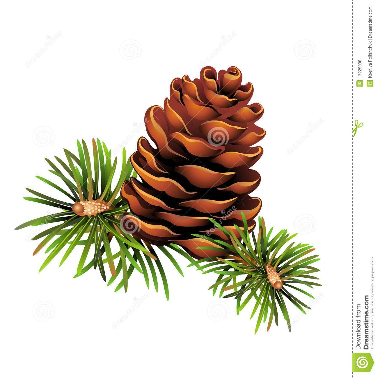 Christmas Pine Cone Clipart Pinecone Christmas Trees