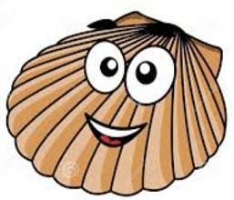 Clam Clipart -clam clipart -3