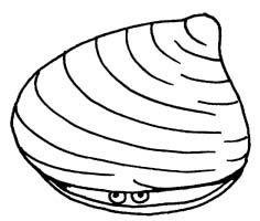Clam 20clipart | Clipart Panda - Free Cl-Clam 20clipart | Clipart Panda - Free Clipart Images-6