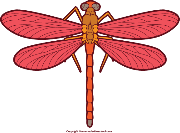 Dragon Fly Clipart