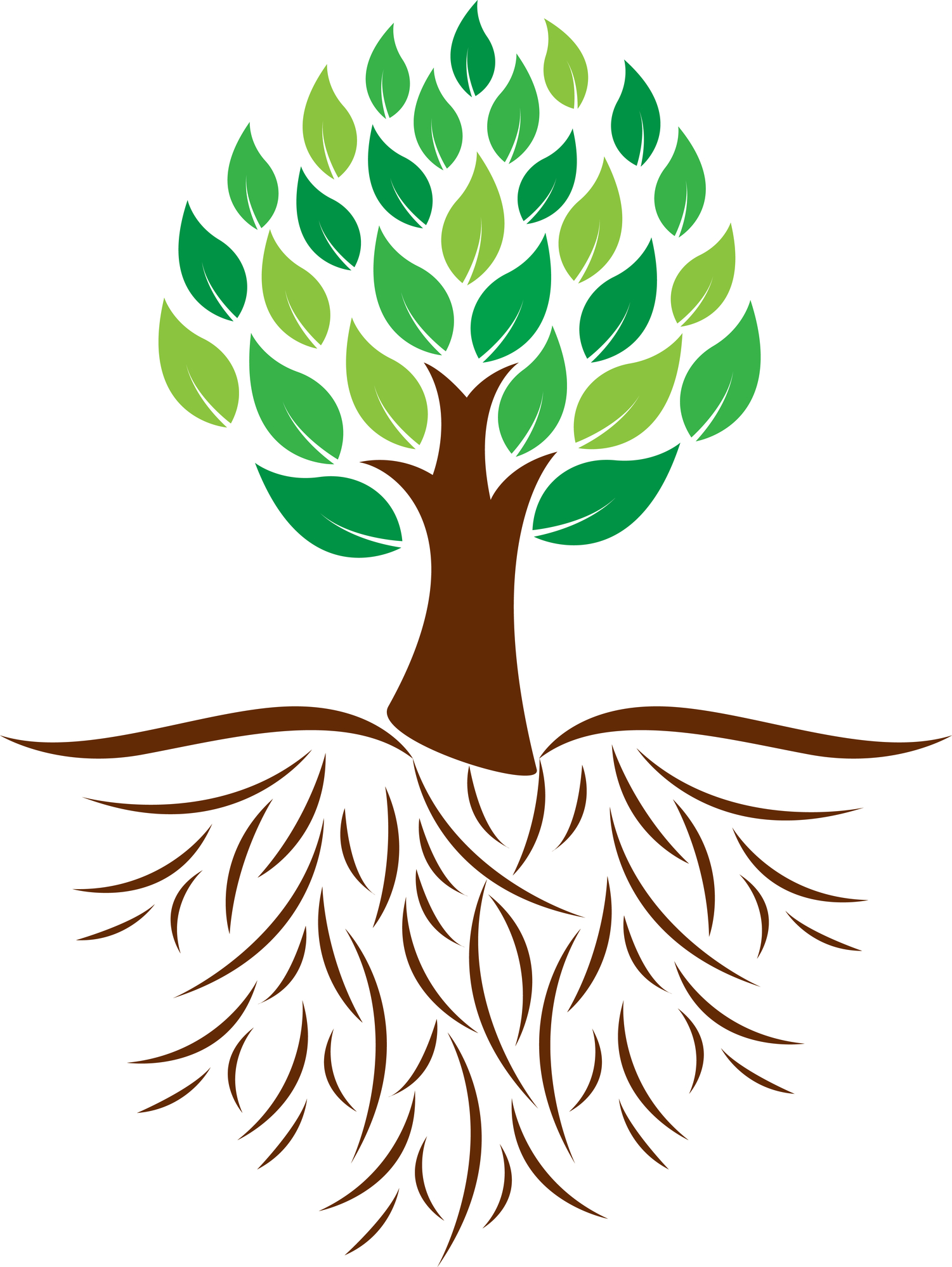 clip art tree with roots