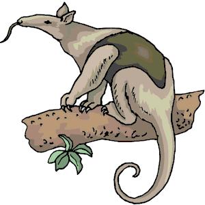 Clip Art Anteater-Clip Art Anteater-10