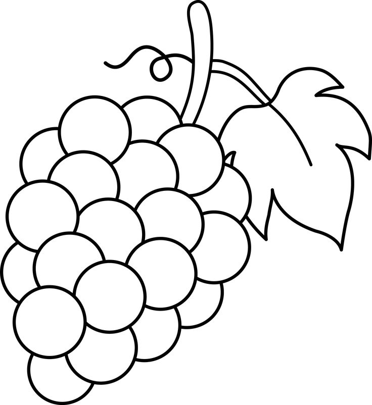 clip art black and white | Grapes Black -clip art black and white | Grapes Black and White Lineart - Free Clip Art-9