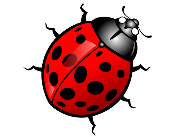 Clip Art Bugs - Clipart Library-Clip Art Bugs - Clipart library-9