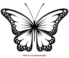Clip Art Butterfly Clipart Black And Whi-Clip Art Butterfly Clipart Black And White butterfly clipart black and white clipartall white-13