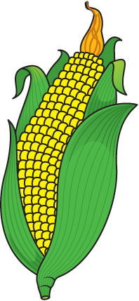 Clip Art Corn Clipart corn clipart free -Clip Art Corn Clipart corn clipart free download clip art on clipart-12