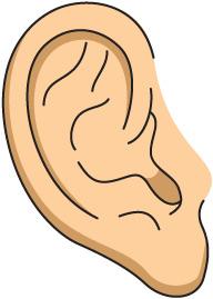 Clip Art Ears - Getbellhop