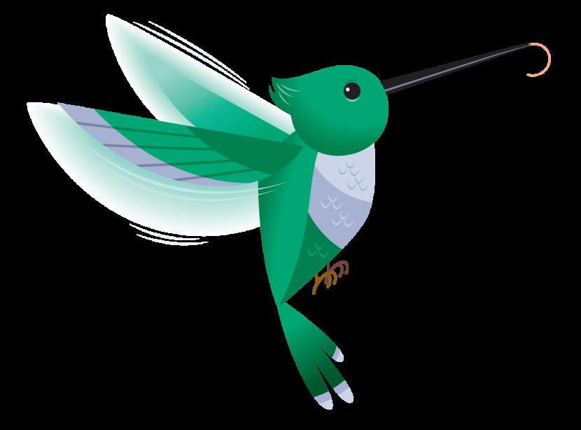 Clip Art Hummingbird