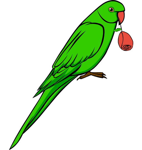 clip art love bird parrot .