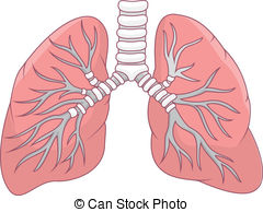 Clip Art Lungs Clipart lung clipart panda free images