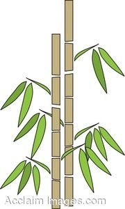 Clip Art Of A Bamboo Stand-Clip Art Of A Bamboo Stand-15