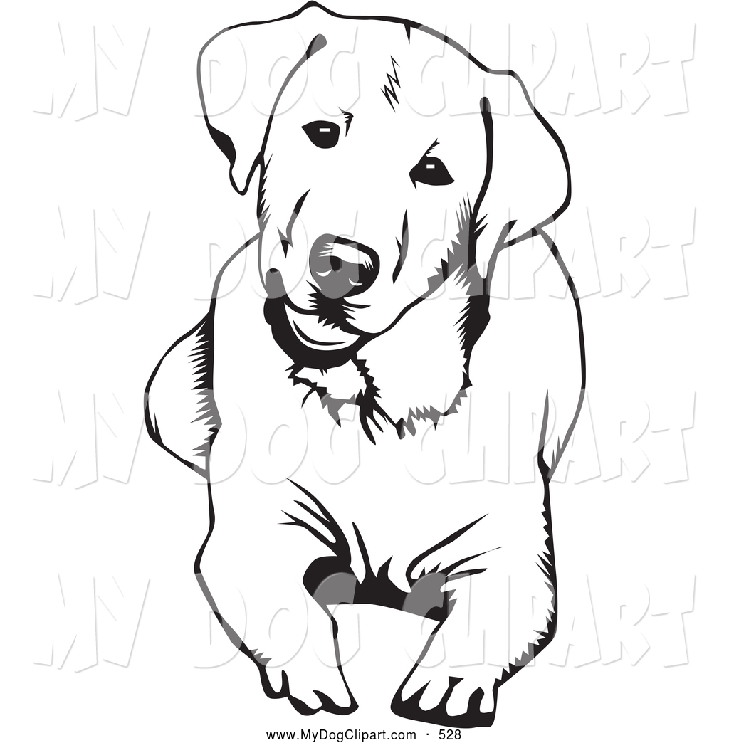 Clip Art Of A Cute And Curious .