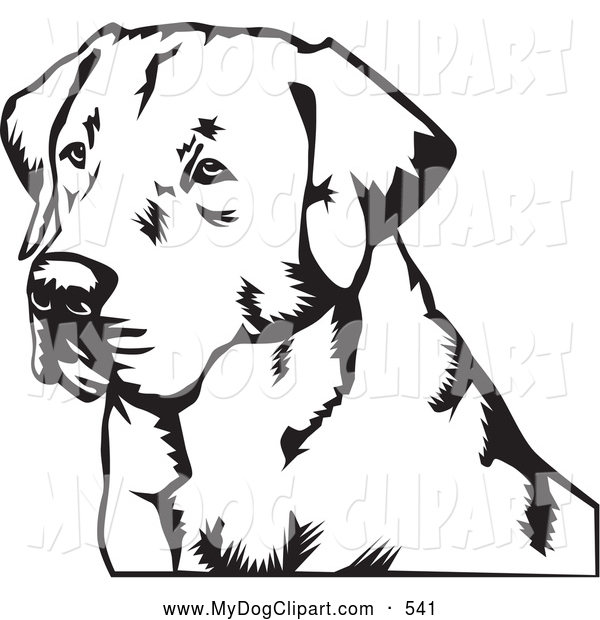 Clip Art of a Friendly Labrador Retriever Dog