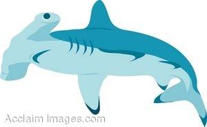 Clip Art Of A Hammerhead Shark-Clip Art Of A Hammerhead Shark-7