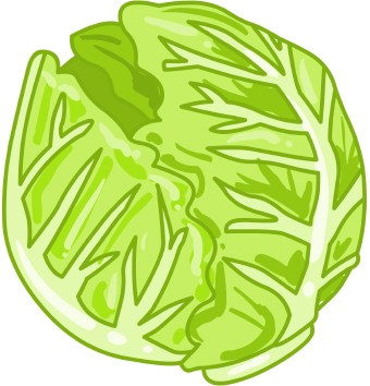 Clip Art Of A Head Of Green Lettuce Or C-Clip Art Of A Head Of Green Lettuce Or Cabbage-0