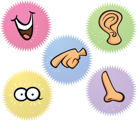 clip art of the 5 senses. Download