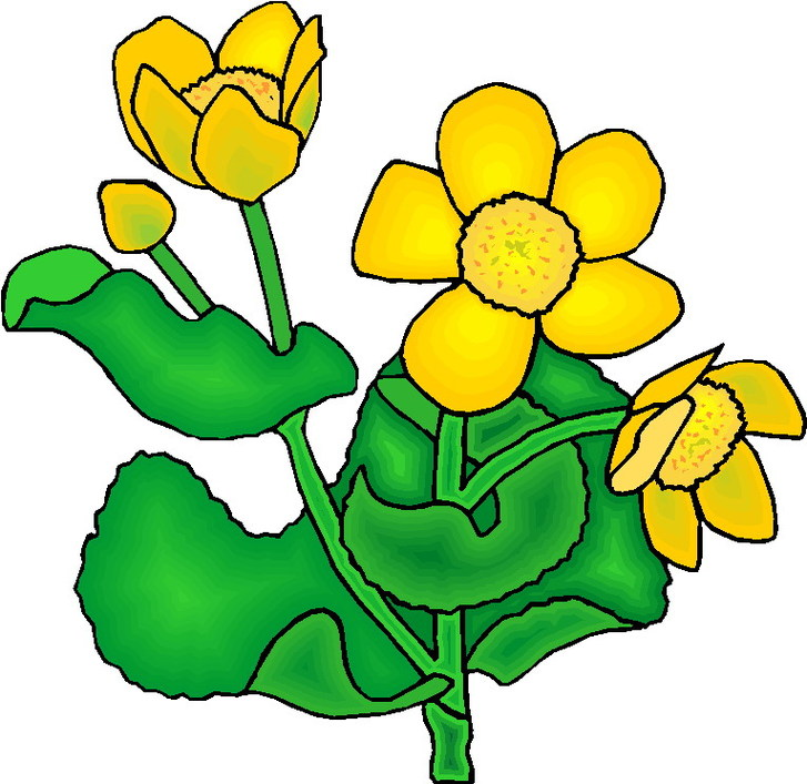 Clip Art Plants