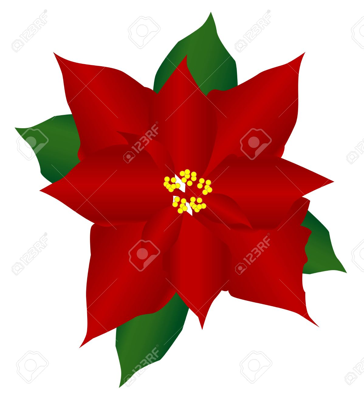 Clip Art Poinsettia Clipart poinsettia royalty free cliparts vectors and stock illustration vector 5790618