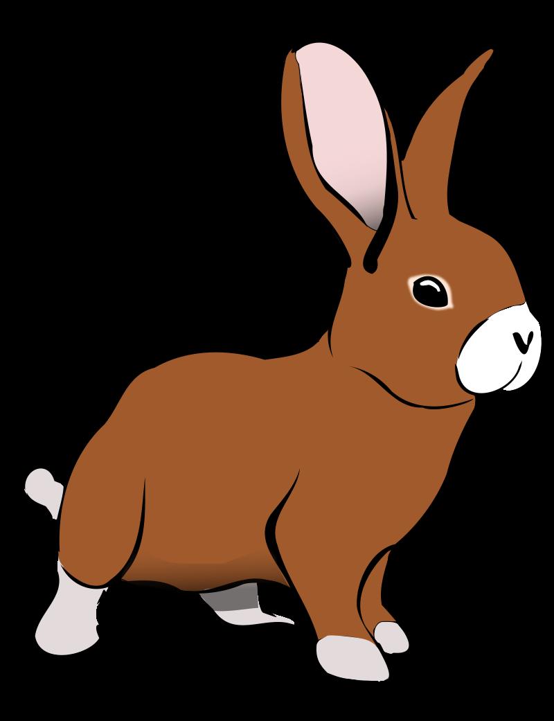 Clip Art Rabbit-Clip Art Rabbit-5