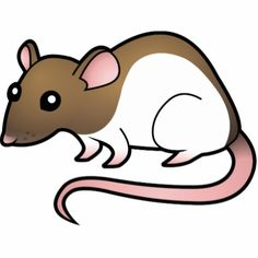 Clip Art Rat - clipartall .