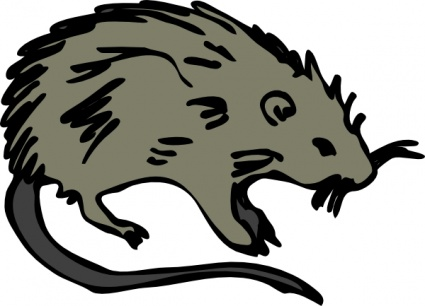 Clip Art Rat - Cliparts.co