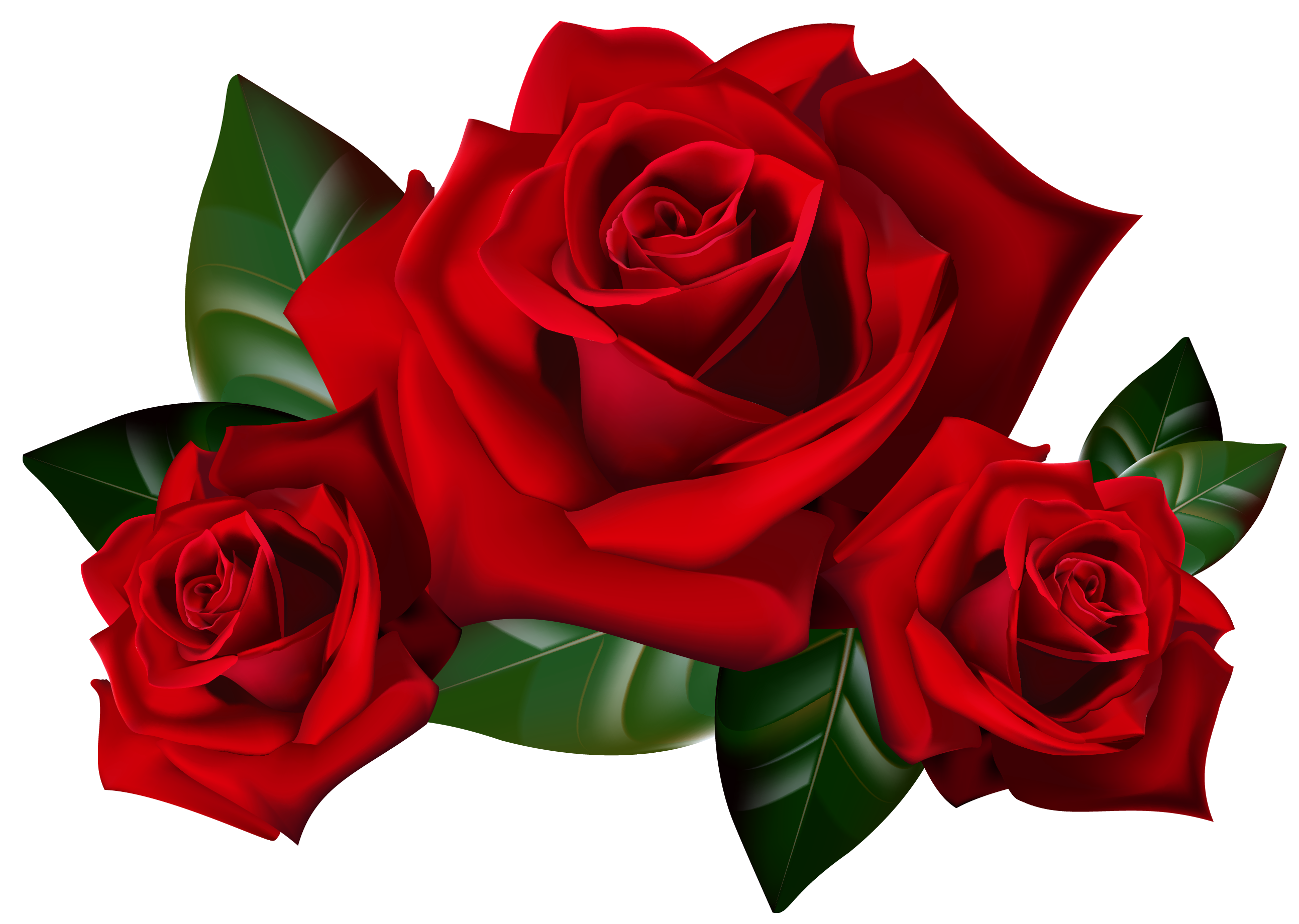 Clip Art Red Roses Cliparts C - Red Roses Clipart