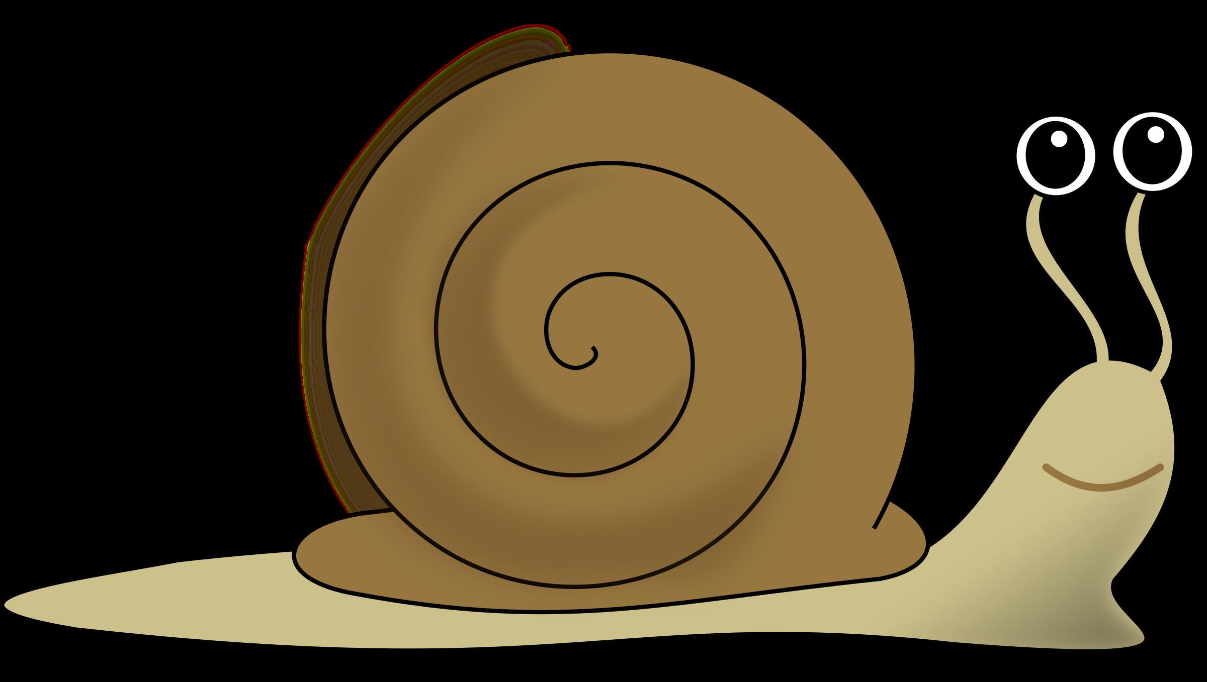 Clip Art Snail Clipart Snail Escargot