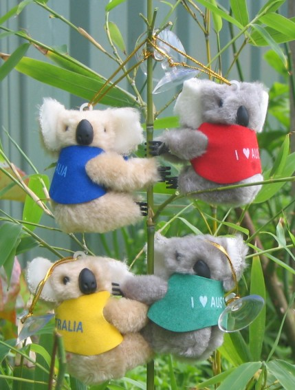 Clip-on koalas with suction-Clip-on koalas with suction-5