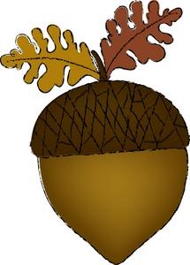 Clipart Acorn-clipart acorn-14