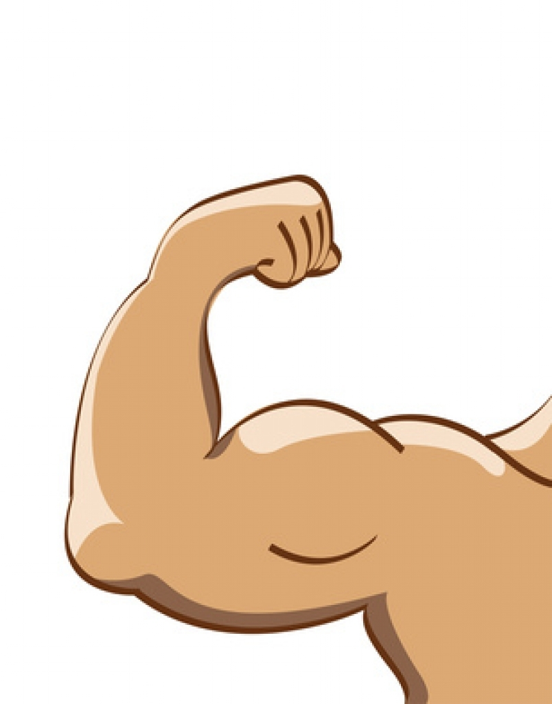 clipart arm muscle clipart arm .